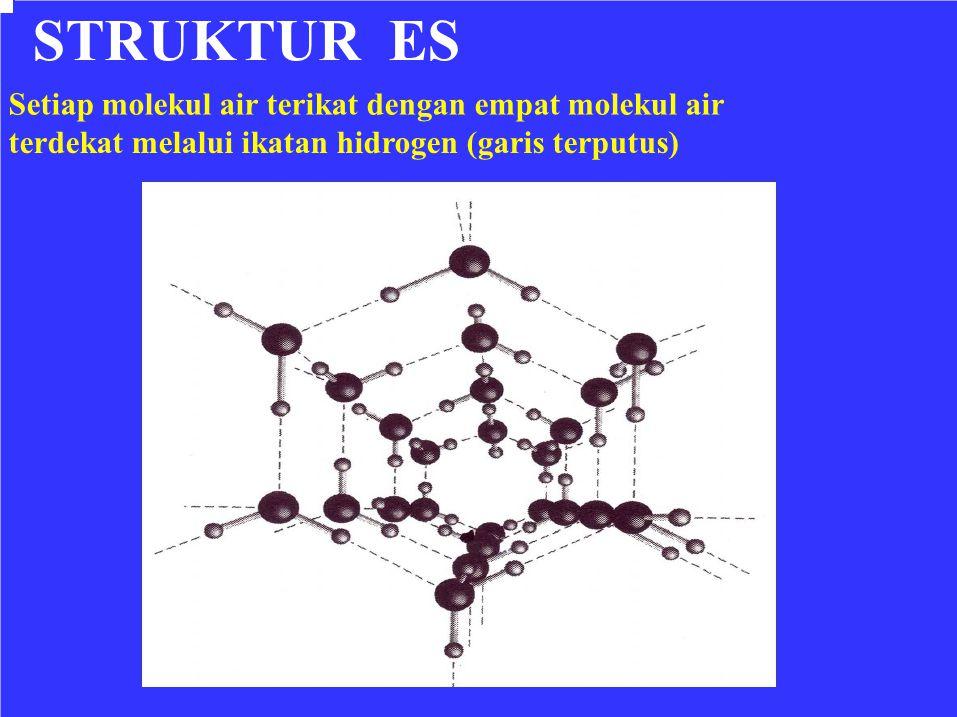 STRUKTUR ES Setiap molekul air terikat dengan empat molekul air terdekat melalui ikatan hidrogen (garis terputus)