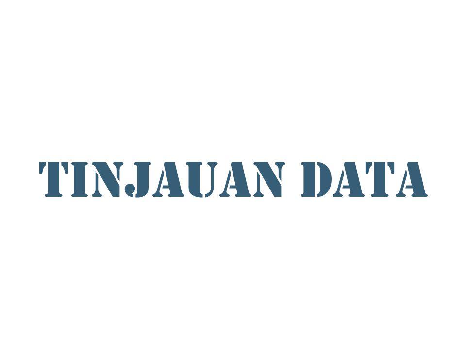 TINJAUAN DATA