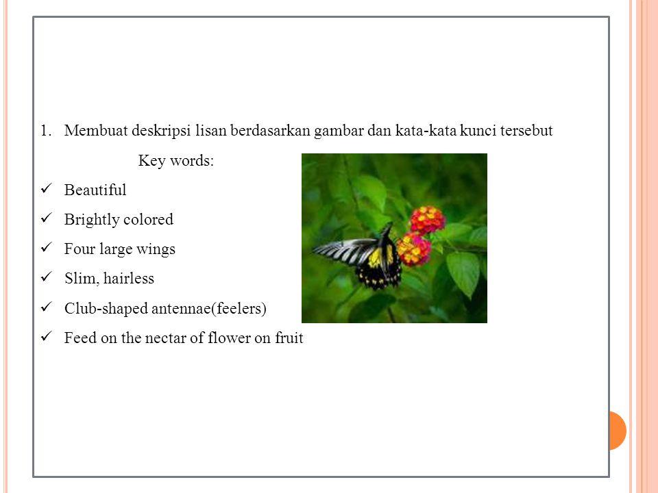 1.Membuat deskripsi lisan berdasarkan gambar dan kata-kata kunci tersebut Key words: Beautiful Brightly colored Four large wings Slim, hairless Club-shaped antennae(feelers) Feed on the nectar of flower on fruit