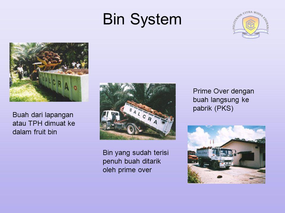 Bin System Buah dari lapangan atau TPH dimuat ke dalam fruit bin Bin yang sudah terisi penuh buah ditarik oleh prime over Prime Over dengan buah langs