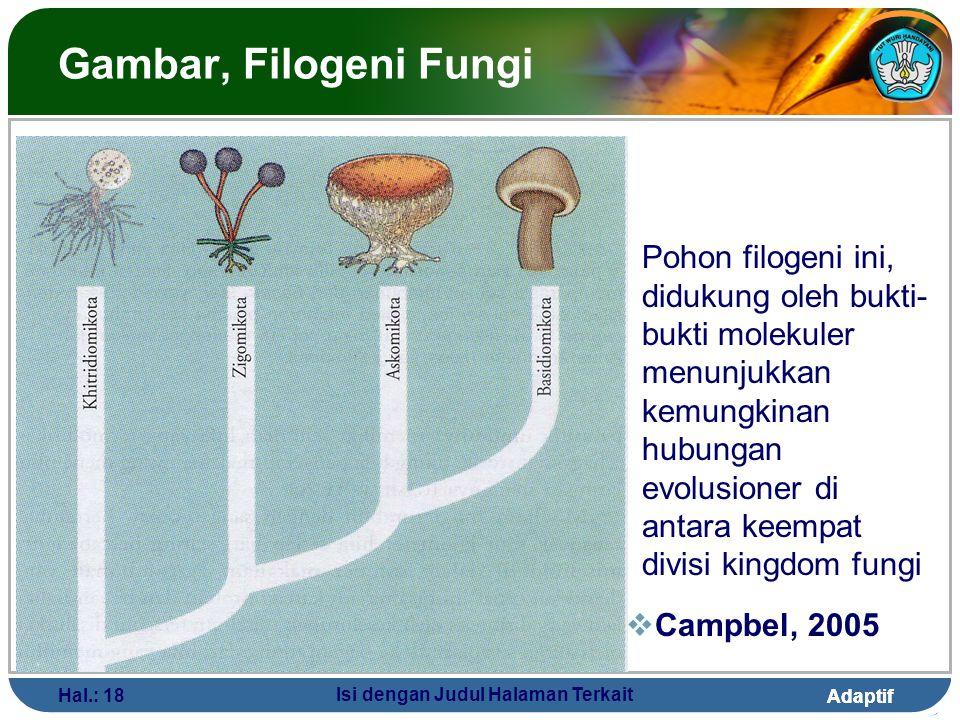 Adaptif Hal.: 18 Isi dengan Judul Halaman Terkait Gambar, Filogeni Fungi  Campbel, 2005 Pohon filogeni ini, didukung oleh bukti- bukti molekuler menu