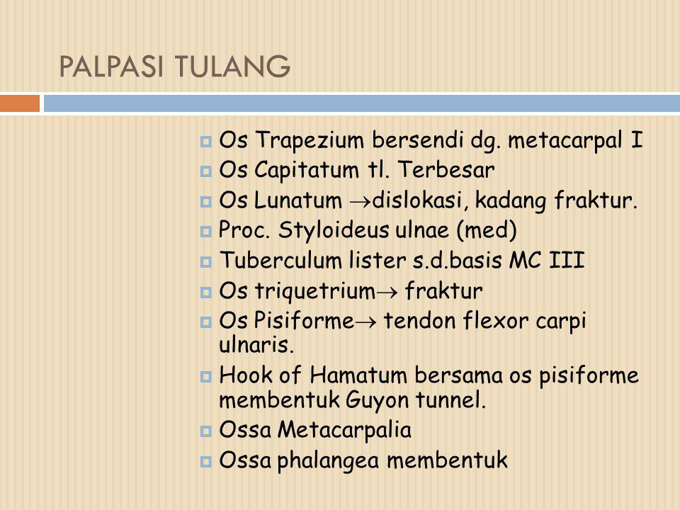 PALPASI TULANG  Os Trapezium bersendi dg. metacarpal I  Os Capitatum tl. Terbesar  Os Lunatum  dislokasi, kadang fraktur.  Proc. Styloideus ulnae