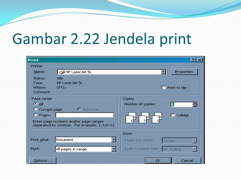 Gambar 2.22 Jendela print
