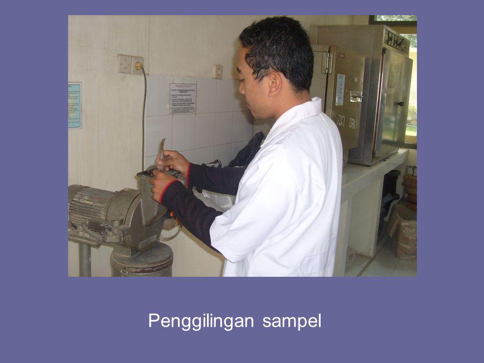 Penggilingan sampel