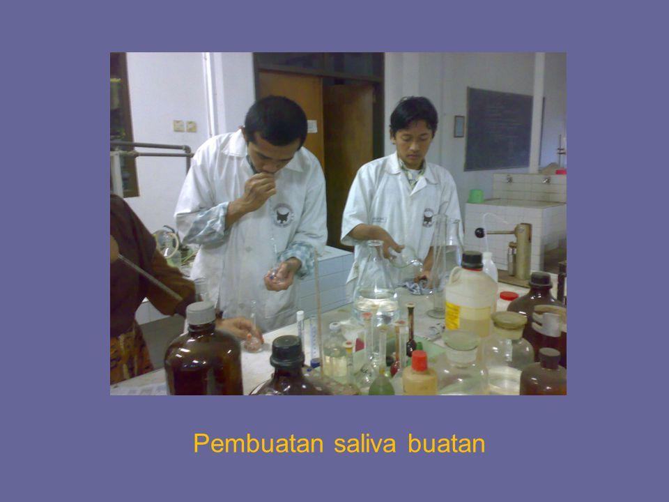 Pembuatan saliva buatan
