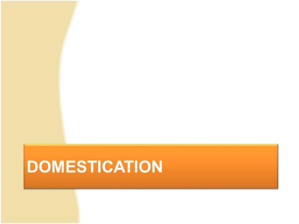 Definisi Domestication Berorientasi pada bahasa sasaran, yakni bahwa terjemahan yang betul , berterima , dan baik adalah yang sesuai dengan selera dan harapan sidang pembaca yang menginginkan teks terjemahan sesuai dengan kebudayaan (citarasa) masyarakat bahasa sasaran.
