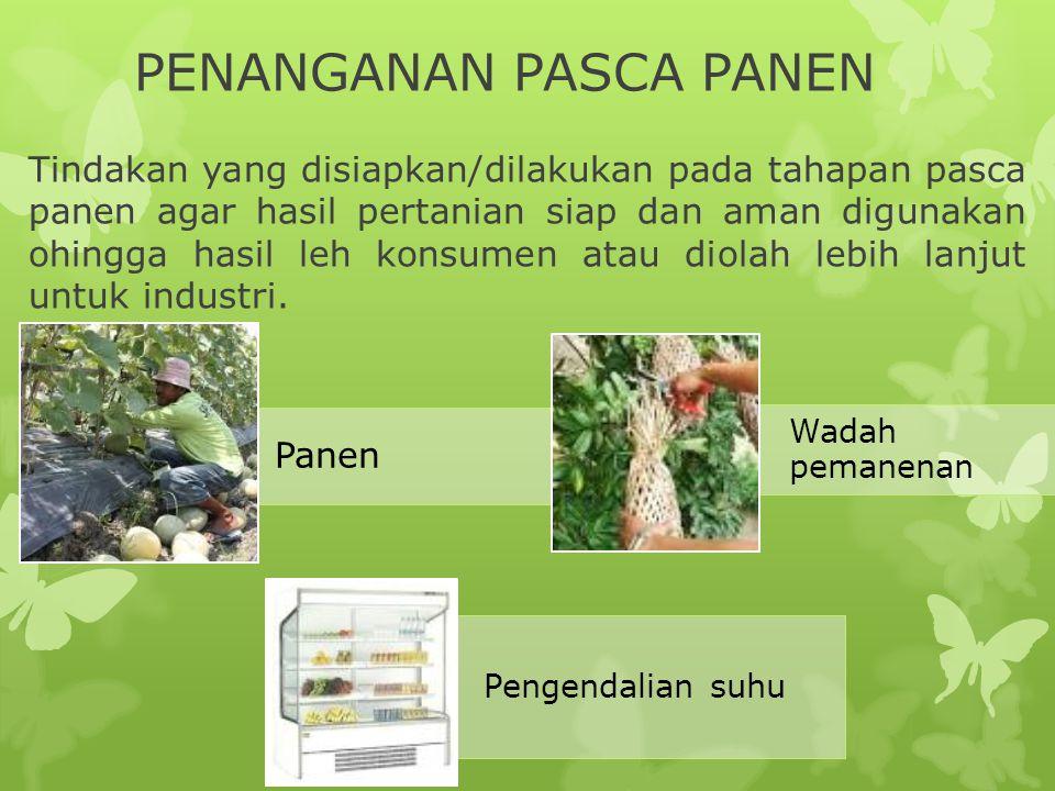 PENANGANAN PASCA PANEN Tindakan yang disiapkan/dilakukan pada tahapan pasca panen agar hasil pertanian siap dan aman digunakan ohingga hasil leh konsu