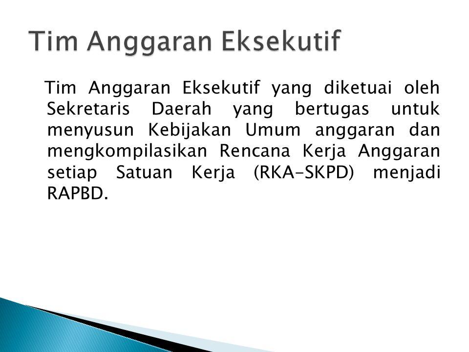 Tim Anggaran Eksekutif yang diketuai oleh Sekretaris Daerah yang bertugas untuk menyusun Kebijakan Umum anggaran dan mengkompilasikan Rencana Kerja An