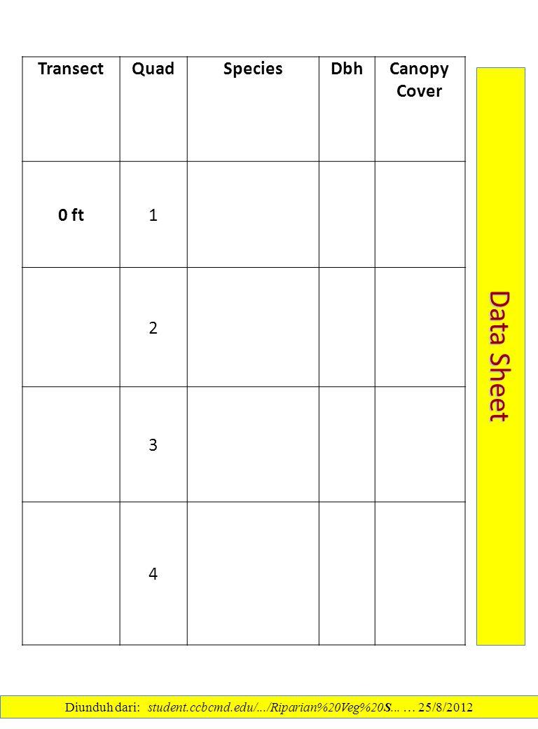 TransectQuadSpeciesDbhCanopy Cover 0 ft1 2 3 4 Data Sheet Diunduh dari: student.ccbcmd.edu/.../Riparian%20Veg%20S... … 25/8/2012