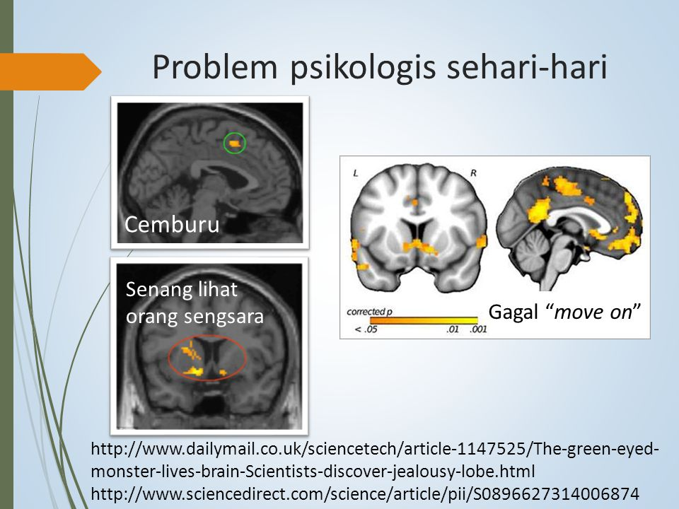 Problem psikologis sehari-hari Cemburu http://www.dailymail.co.uk/sciencetech/article-1147525/The-green-eyed- monster-lives-brain-Scientists-discover-jealousy-lobe.html http://www.sciencedirect.com/science/article/pii/S0896627314006874 Senang lihat orang sengsara Gagal move on