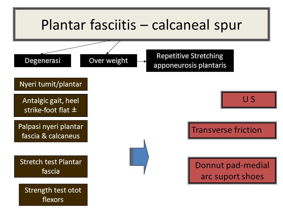 Plantar fasciitis – calcaneal spur DegenerasiOver weight Repetitive Stretching apponeurosis plantaris Nyeri tumit/plantar Antalgic gait, heel strike-f