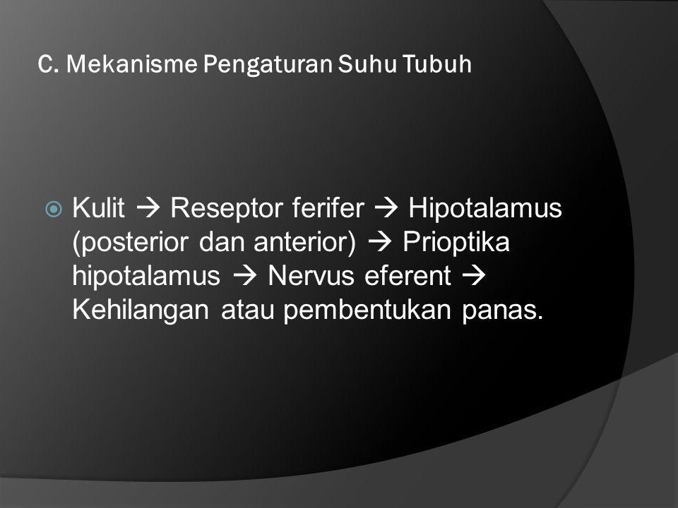 C. Mekanisme Pengaturan Suhu Tubuh  Kulit  Reseptor ferifer  Hipotalamus (posterior dan anterior)  Prioptika hipotalamus  Nervus eferent  Kehila