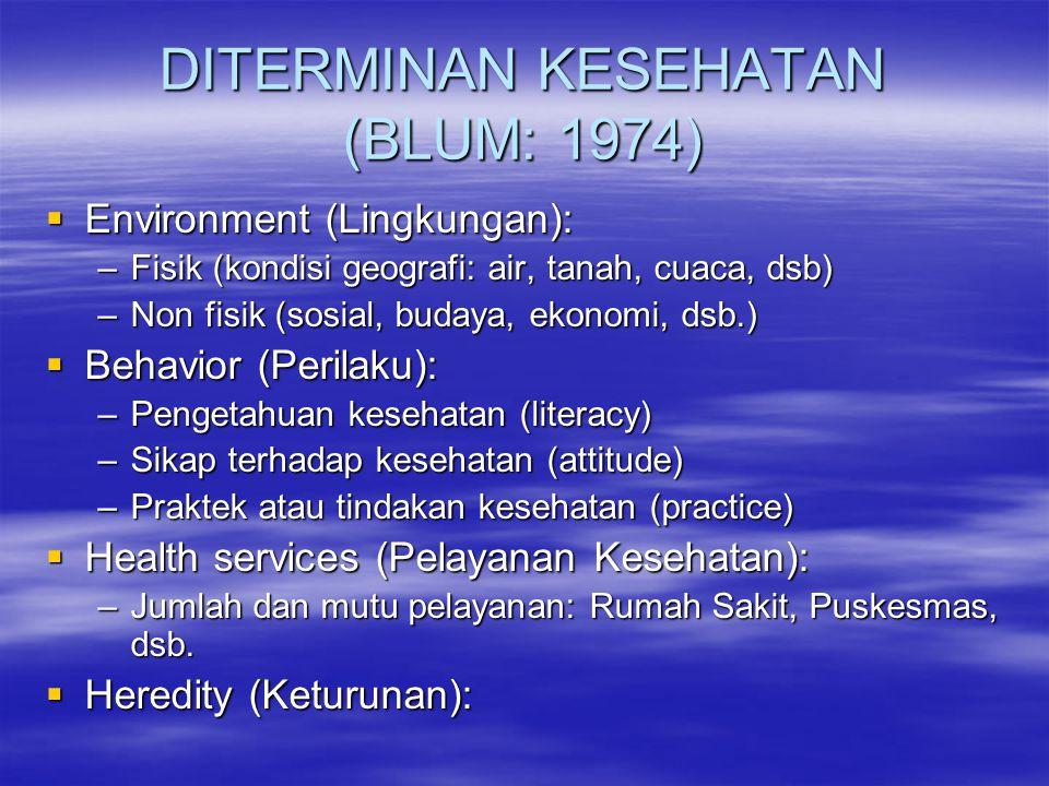 DITERMINAN KESEHATAN (BLUM: 1974)  Environment (Lingkungan): –Fisik (kondisi geografi: air, tanah, cuaca, dsb) –Non fisik (sosial, budaya, ekonomi, d