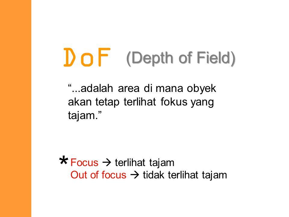 DoF dipengaruhi oleh 2 faktor : 1.Bukaan diafragma (lens aperture) 2.Jarak kamera ke obyek (distance to subject) factor s