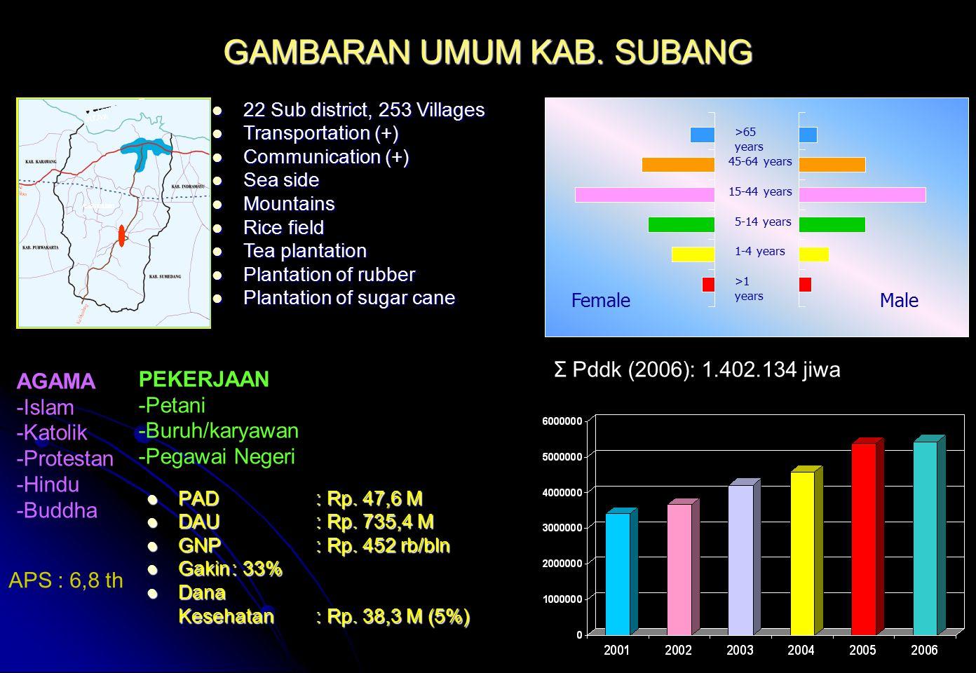 GAMBARAN UMUM KAB. SUBANG PAD: Rp. 47,6 M PAD: Rp. 47,6 M DAU: Rp. 735,4 M DAU: Rp. 735,4 M GNP: Rp. 452 rb/bln GNP: Rp. 452 rb/bln Gakin: 33% Gakin:
