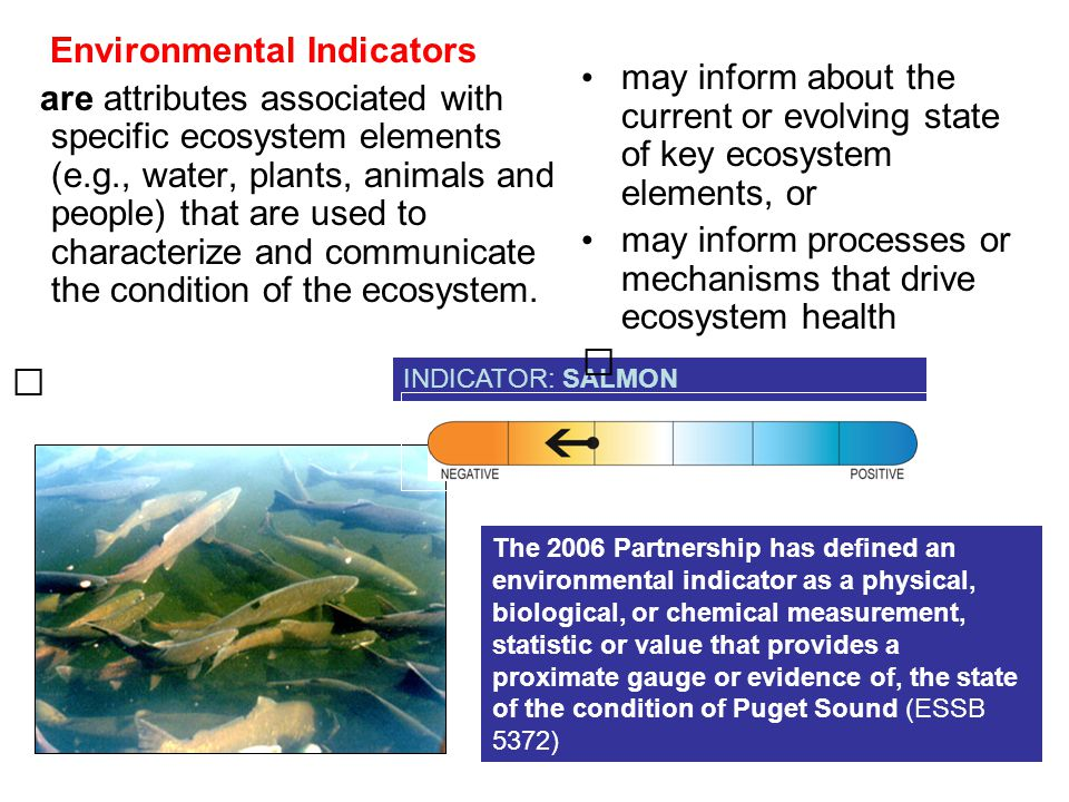 Environmental Indicators are attributes associated with specific ecosystem elements (e.g., water, plants, animals and people) that are used to characterize and communicate the condition of the ecosystem.