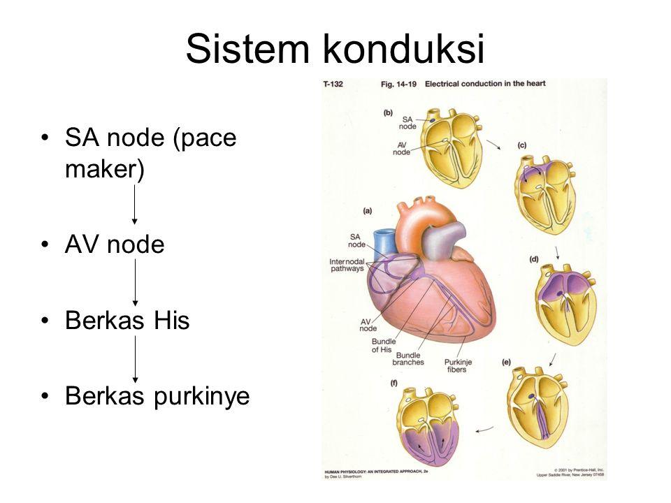 Sistem konduksi SA node (pace maker) AV node Berkas His Berkas purkinye