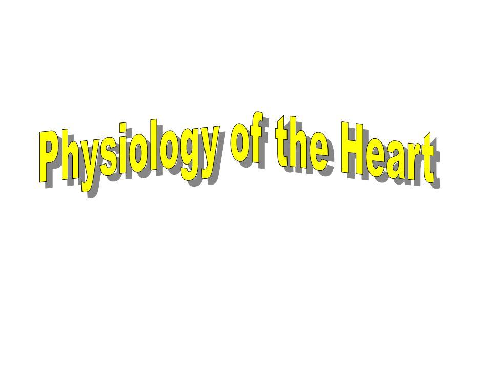 Daya pompa jantung Heart rate (denyut jantung) Stroke volume (volume sekuncup) Cardiac Output (curah jantung) HR x SV = CO 70 bpm x 70 ml = 4900 ml ≈ 5 liter