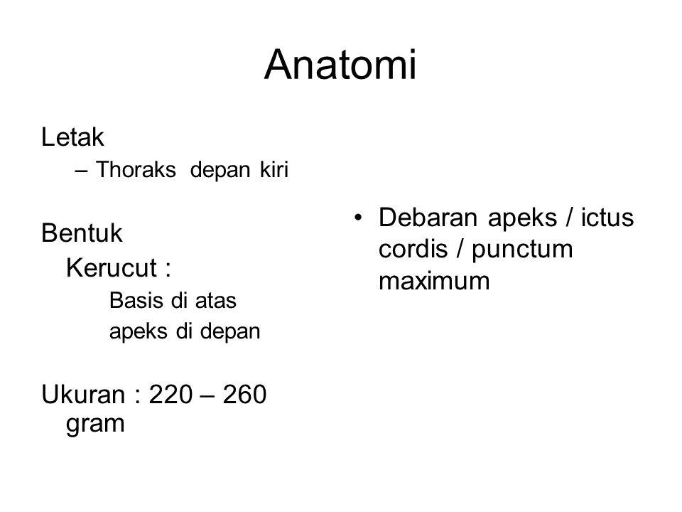Anatomi Letak –Thoraks depan kiri Bentuk Kerucut : Basis di atas apeks di depan Ukuran : 220 – 260 gram Debaran apeks / ictus cordis / punctum maximum