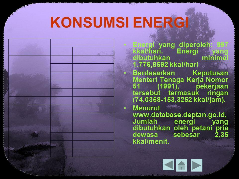 KONSUMSI ENERGI Energi yang diperoleh: 997 kkal/hari.