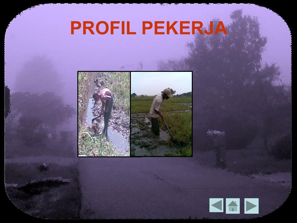 PROFIL PEKERJA