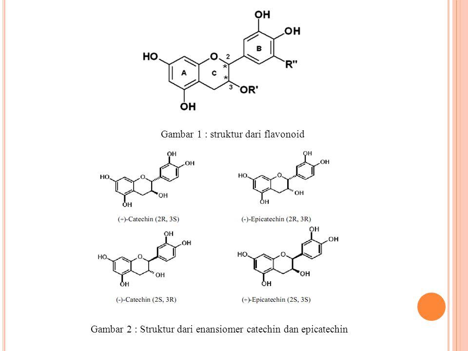 M IKROBIOLOGI P ADA F ERMENTASI B IJI C OKLAT Mikroorganisme yang telah dihasilkan dari aktifitas biokimia tersebut menghasilkan asam dan alkohol yang digunakan untuk menetralkan rekasi kimia pada rasa coklat.