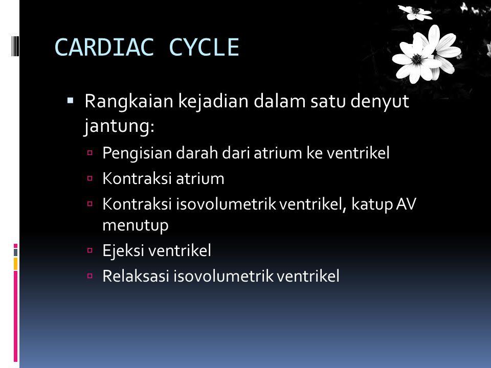CARDIAC CYCLE  Rangkaian kejadian dalam satu denyut jantung:  Pengisian darah dari atrium ke ventrikel  Kontraksi atrium  Kontraksi isovolumetrik