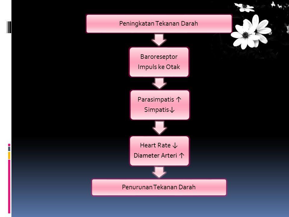 Peningkatan Tekanan Darah Baroreseptor Impuls ke Otak Parasimpatis ↑ Simpatis ↓ Heart Rate ↓ Diameter Arteri ↑ Penurunan Tekanan Darah