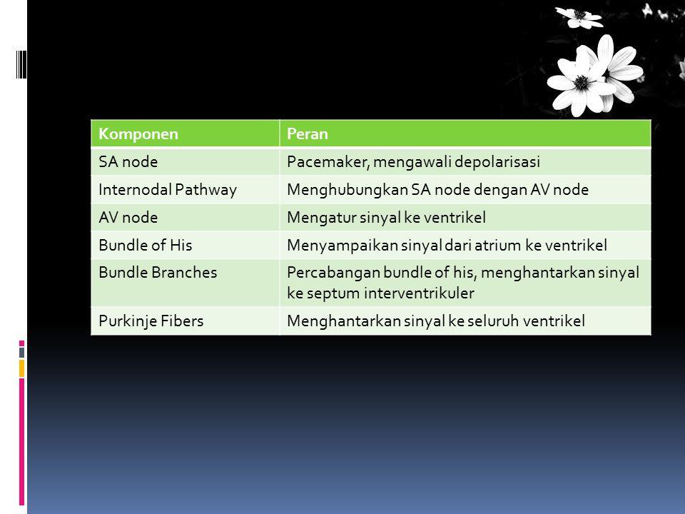 KomponenPeran SA nodePacemaker, mengawali depolarisasi Internodal PathwayMenghubungkan SA node dengan AV node AV nodeMengatur sinyal ke ventrikel Bund