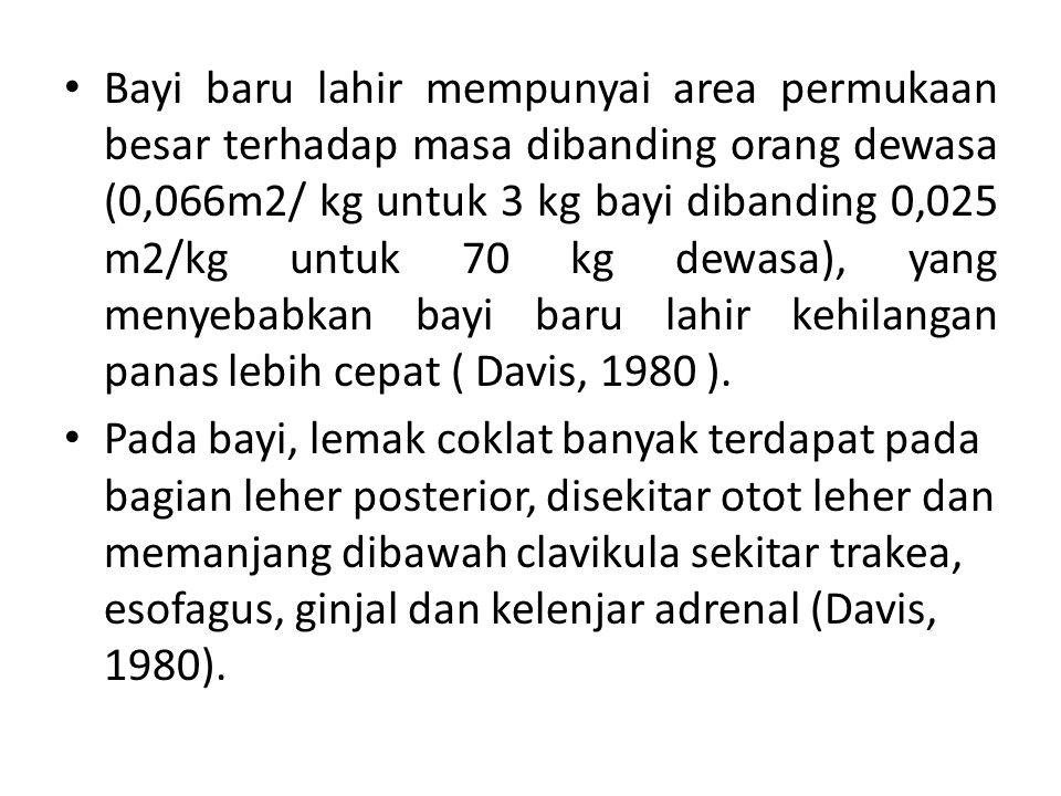 Bayi baru lahir mempunyai area permukaan besar terhadap masa dibanding orang dewasa (0,066m2/ kg untuk 3 kg bayi dibanding 0,025 m2/kg untuk 70 kg dew