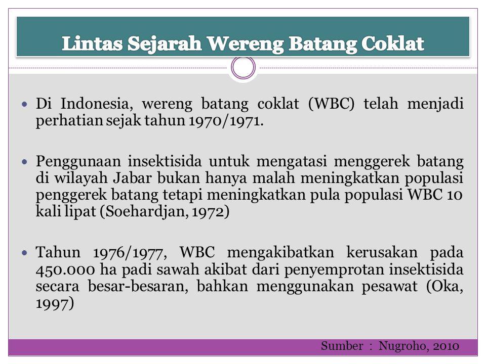 Di Indonesia, wereng batang coklat (WBC) telah menjadi perhatian sejak tahun 1970/1971. Penggunaan insektisida untuk mengatasi menggerek batang di wil