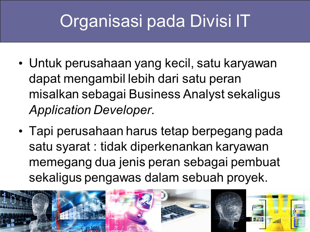 Organisasi pada Divisi IT Untuk perusahaan yang kecil, satu karyawan dapat mengambil lebih dari satu peran misalkan sebagai Business Analyst sekaligus
