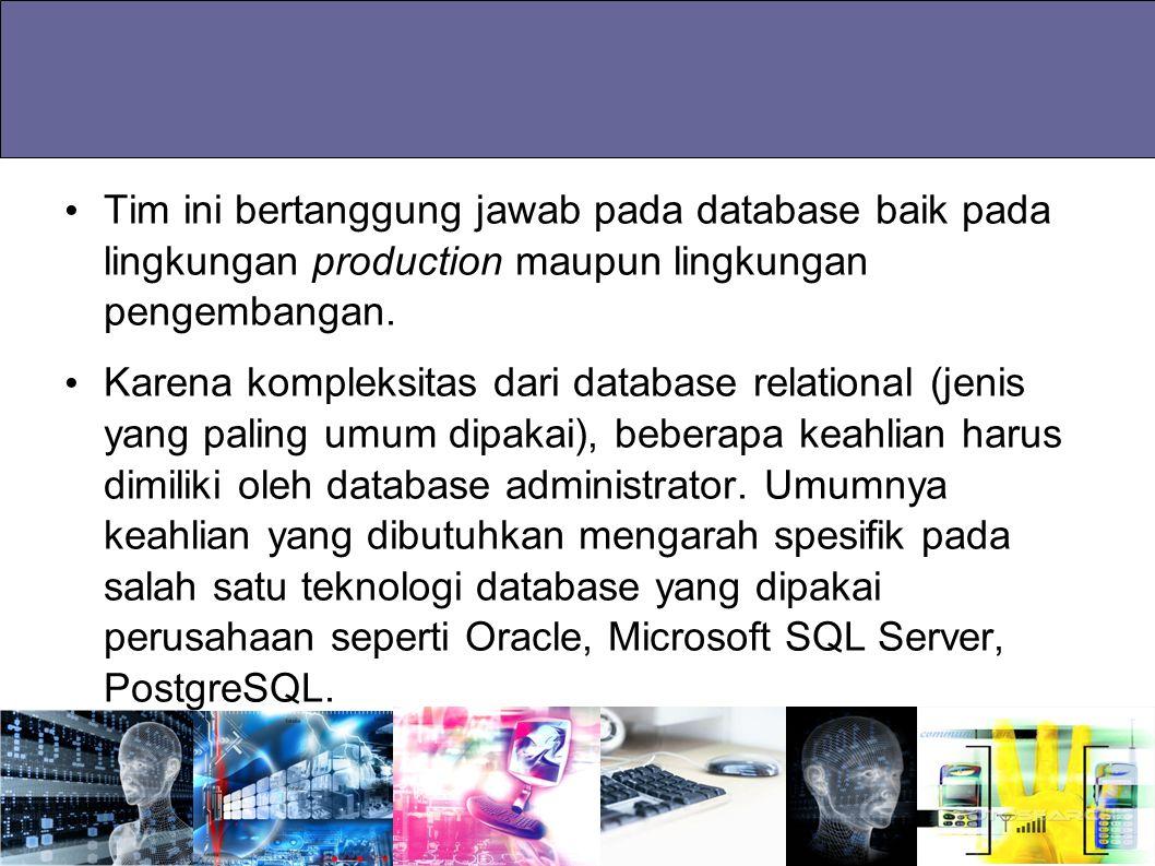 Tim ini bertanggung jawab pada database baik pada lingkungan production maupun lingkungan pengembangan. Karena kompleksitas dari database relational (
