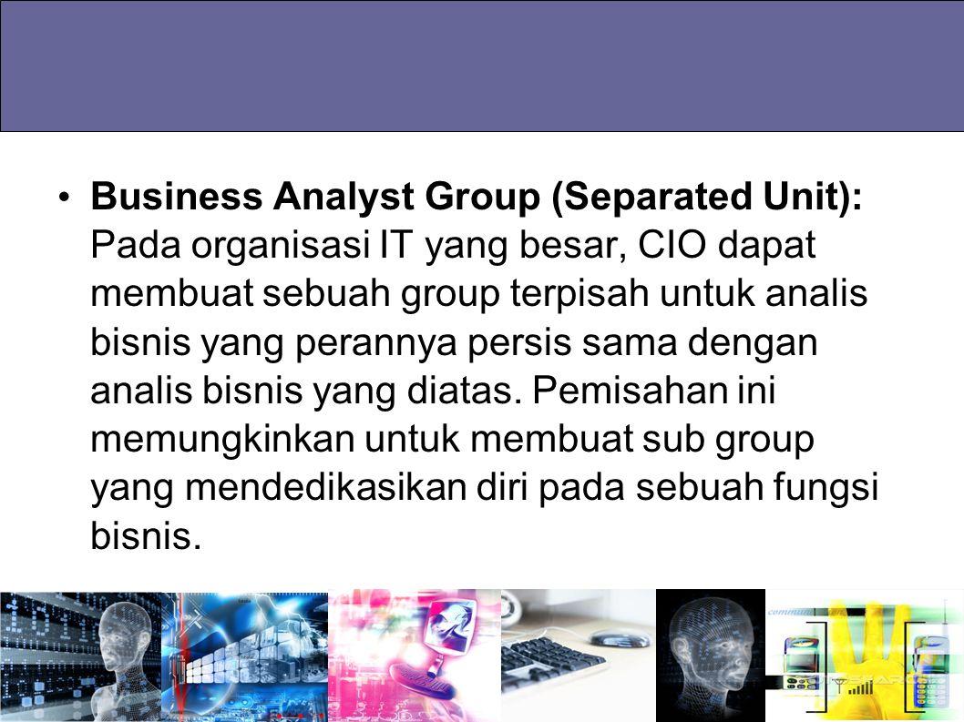 Business Analyst Group (Separated Unit): Pada organisasi IT yang besar, CIO dapat membuat sebuah group terpisah untuk analis bisnis yang perannya pers