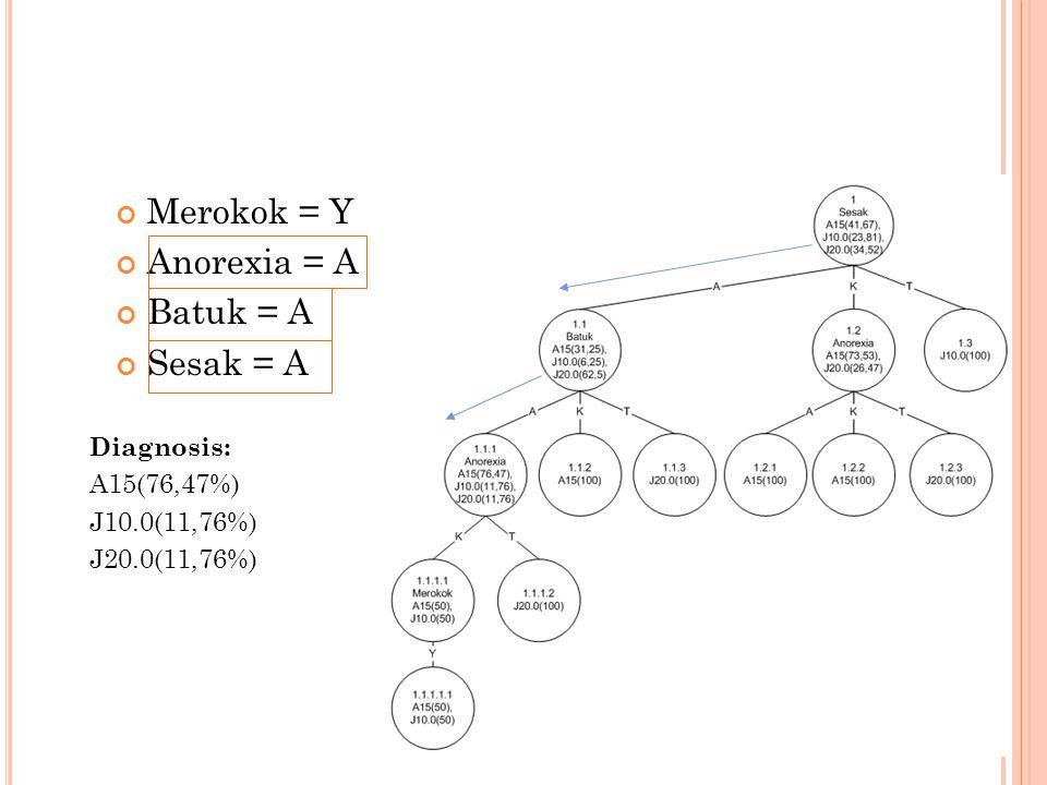 Merokok = Y Anorexia = A Batuk = A Sesak = A Diagnosis: A15(76,47%) J10.0(11,76%) J20.0(11,76%)