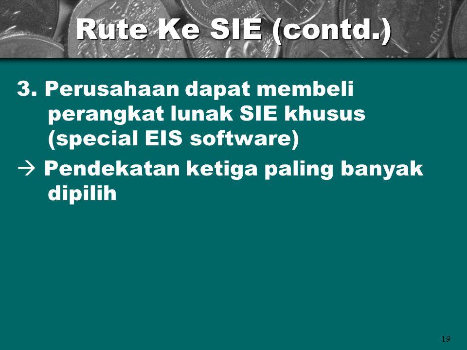 19 Rute Ke SIE (contd.) 3. Perusahaan dapat membeli perangkat lunak SIE khusus (special EIS software)  Pendekatan ketiga paling banyak dipilih