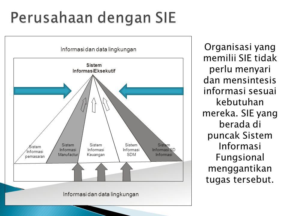 Sistem Informasi pemasaran Informasi dan data lingkungan Sistem InformasiEksekutif Sistem Informasi Manufactur Sistem Informasi Keuangan Sistem Inform