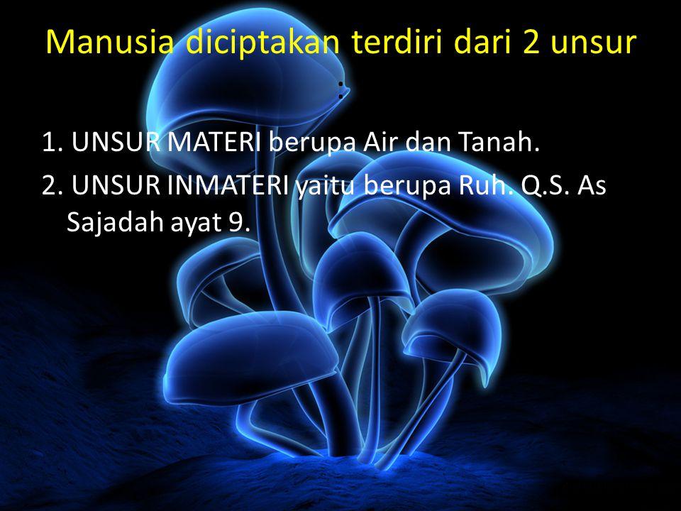 Manusia diciptakan terdiri dari 2 unsur : 1. UNSUR MATERI berupa Air dan Tanah. 2. UNSUR INMATERI yaitu berupa Ruh. Q.S. As Sajadah ayat 9.