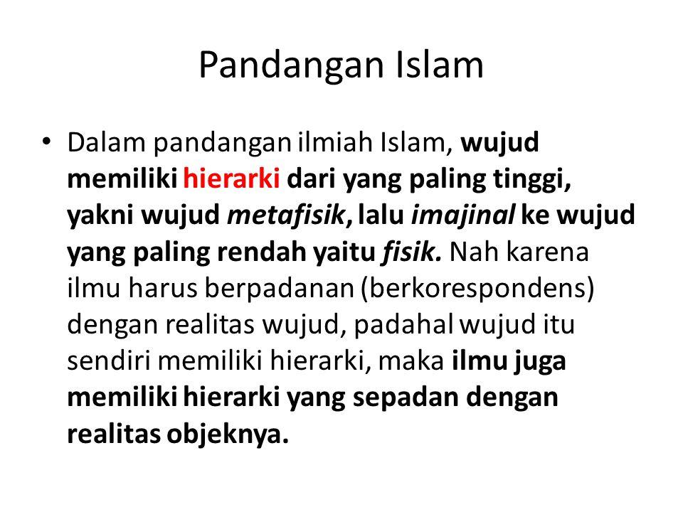 Pandangan Islam Dalam pandangan ilmiah Islam, wujud memiliki hierarki dari yang paling tinggi, yakni wujud metafisik, lalu imajinal ke wujud yang pali