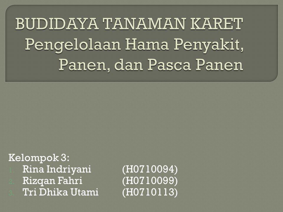 Kelompok 3: 1. Rina Indriyani(H0710094) 2. Rizqan Fahri(H0710099) 3. Tri Dhika Utami(H0710113)