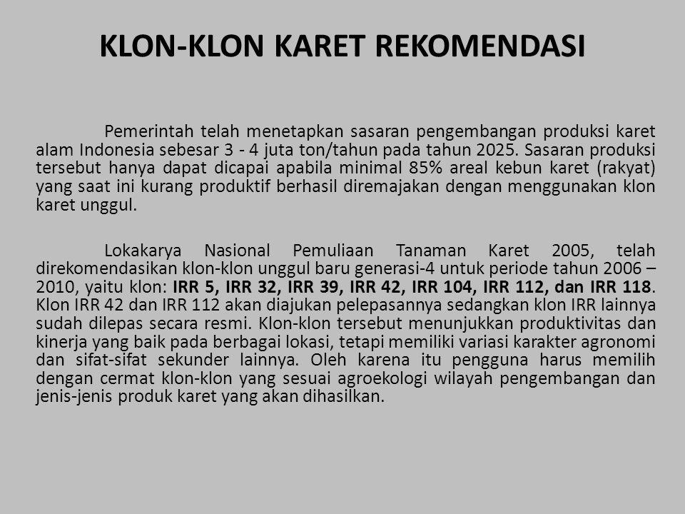 KLON-KLON KARET REKOMENDASI Pemerintah telah menetapkan sasaran pengembangan produksi karet alam Indonesia sebesar 3 - 4 juta ton/tahun pada tahun 202