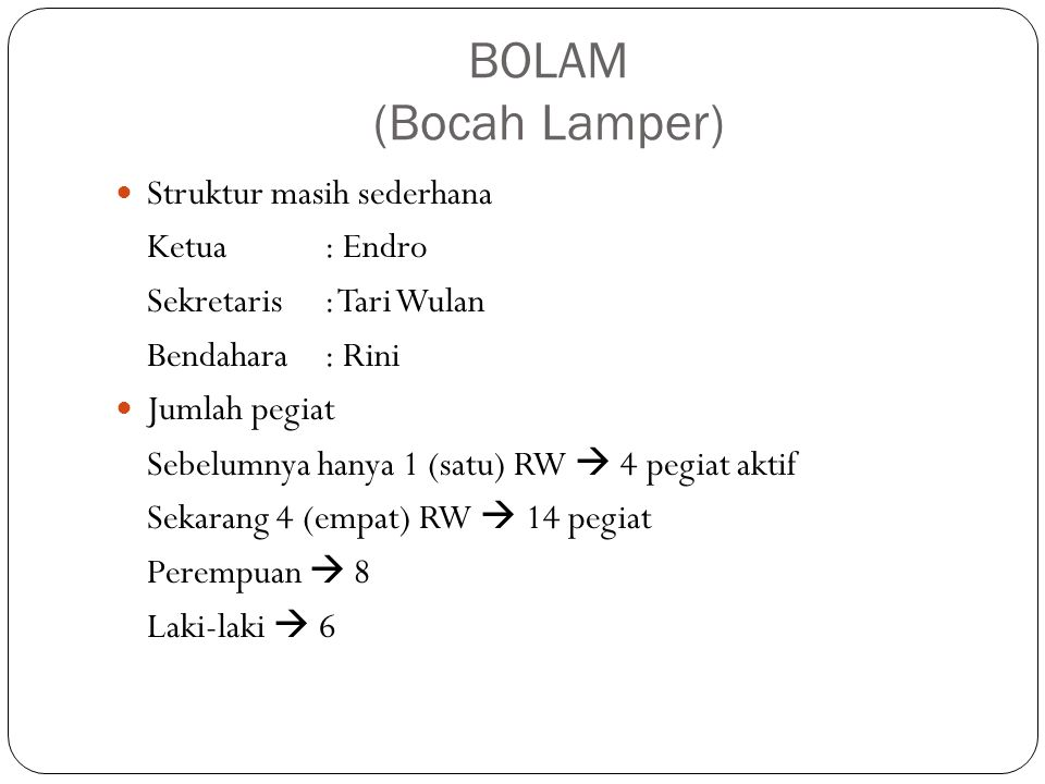 BOLAM (Bocah Lamper) Struktur masih sederhana Ketua : Endro Sekretaris: Tari Wulan Bendahara: Rini Jumlah pegiat Sebelumnya hanya 1 (satu) RW  4 pegi