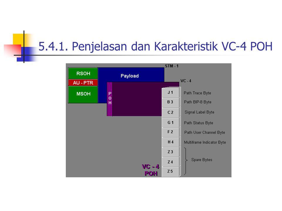 5.4.1. Penjelasan dan Karakteristik VC-4 POH