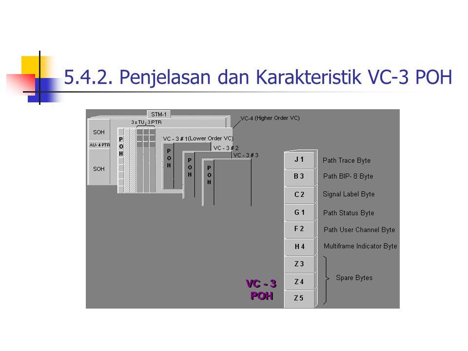 5.4.2. Penjelasan dan Karakteristik VC-3 POH