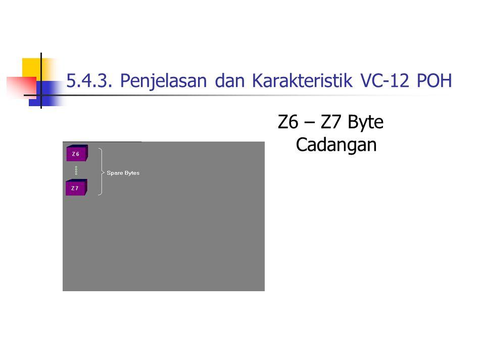 5.4.3. Penjelasan dan Karakteristik VC-12 POH Z6 – Z7 Byte Cadangan