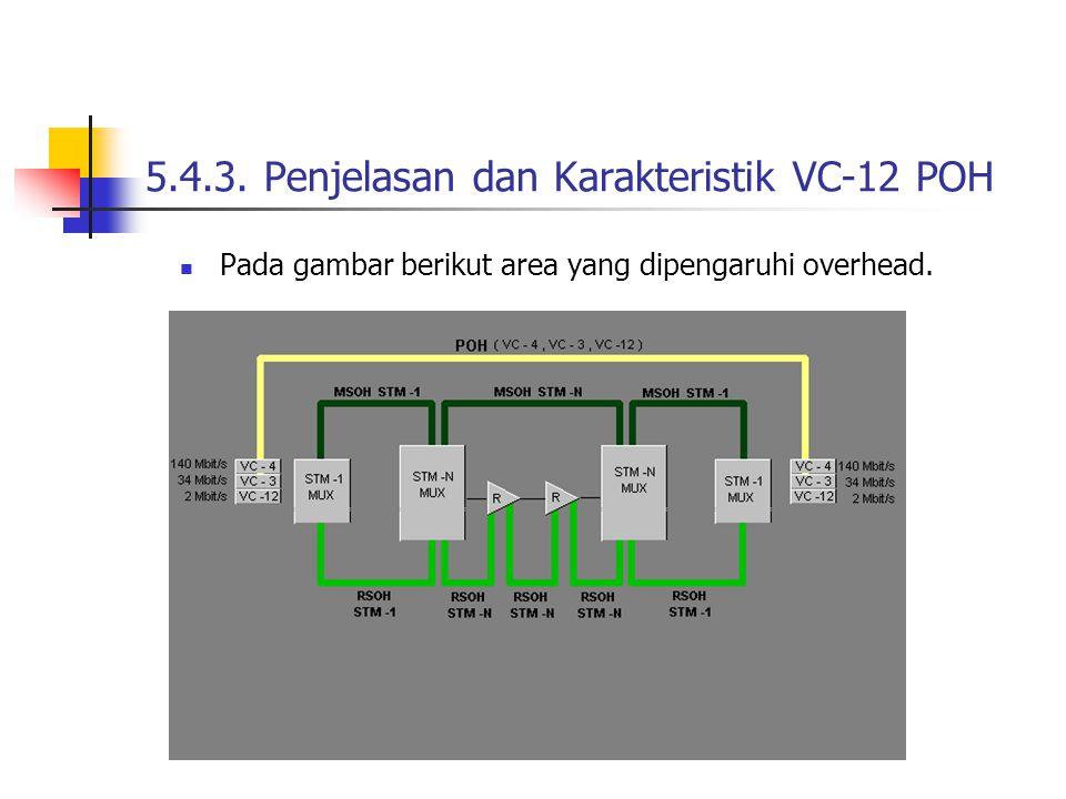 5.4.3. Penjelasan dan Karakteristik VC-12 POH Pada gambar berikut area yang dipengaruhi overhead.