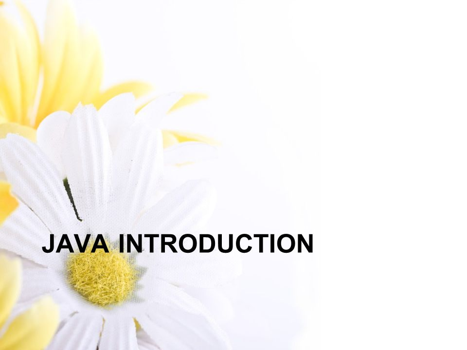 Java Virtual Machine Java Virtual Machine (JVM) – Mesin virtual yang diimplementasikan oleh software sehingga menyamai mesin yang sebenarnya.