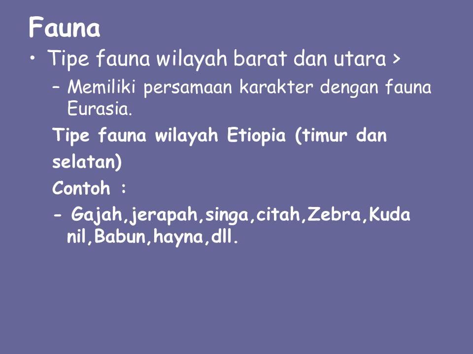 Fauna Tipe fauna wilayah barat dan utara > –M–Memiliki persamaan karakter dengan fauna Eurasia. Tipe fauna wilayah Etiopia (timur dan selatan) Contoh
