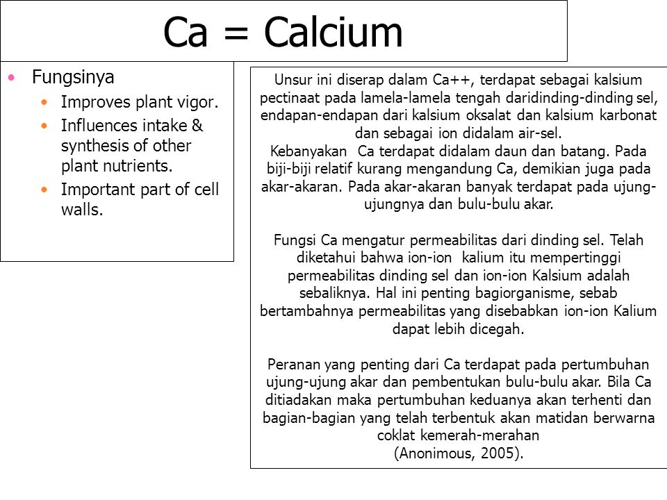 Ca = Calcium Fungsinya Improves plant vigor. Influences intake & synthesis of other plant nutrients. Important part of cell walls. Unsur ini diserap d