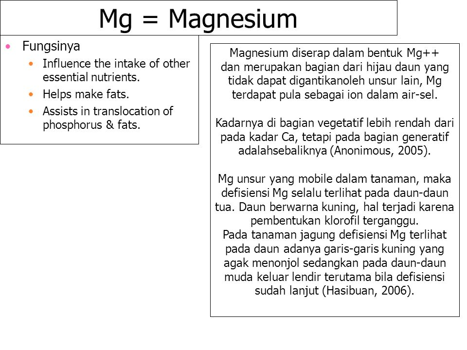 Mg = Magnesium Fungsinya Influence the intake of other essential nutrients. Helps make fats. Assists in translocation of phosphorus & fats. Magnesium
